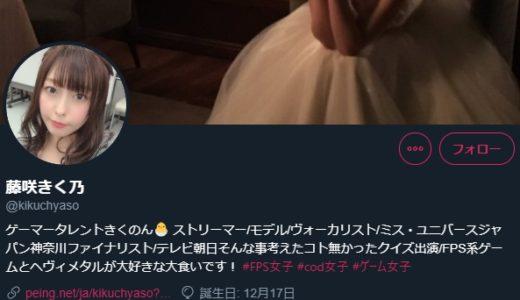 藤咲きく乃ドラゴンクエスト夏祭り出場辞退の理由は?裏アカがヤバい?@DQ_X